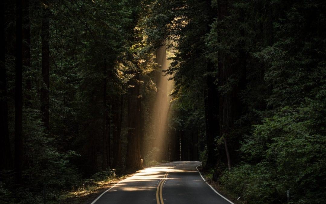 Natural Theology, Providence, and Prayer